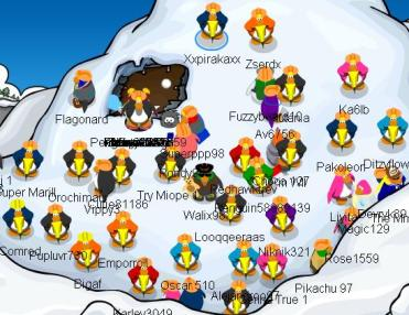 pinguinos-martilleros